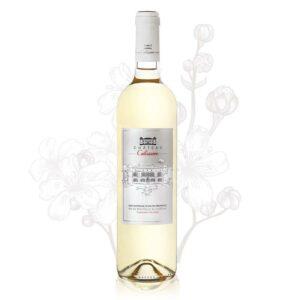 chateau calissanne blanc provence e910e8a5 c9ac 4ba3 8dfe 3780b84d8d33 800x 1 300x300 - Château Calissanne - Blanc